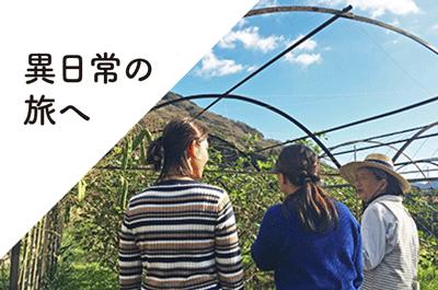【レポート】南伊豆くらし図鑑を開催&交流会を行いました!