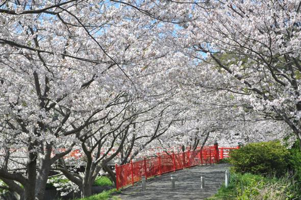日野の出会い橋付近。加賀さん:「ファミマでお菓子を買って行ってらっしゃい!」