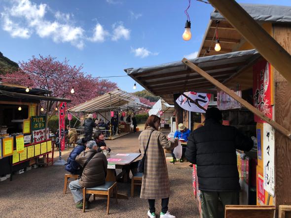 ちなみに桜祭りの様子。2月になると約800本の河津桜が咲き誇り、商店街にお客さんが流れる