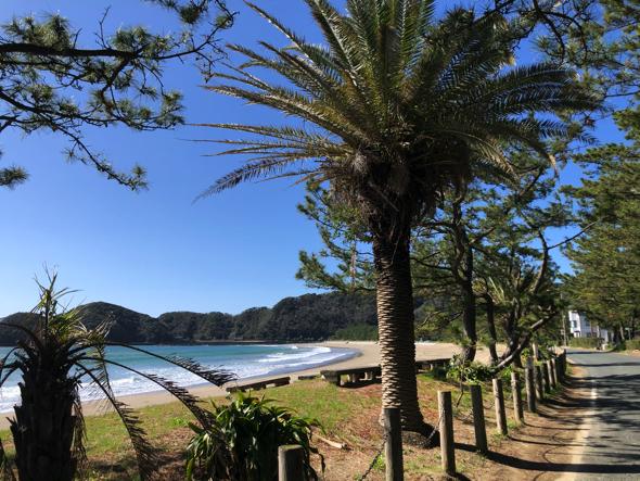 これなんかは夏感もあります、弓ヶ浜