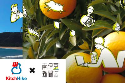 南伊豆町と共催で、グルメアプリ「キッチハイク」とコラボレーション企画がスタート